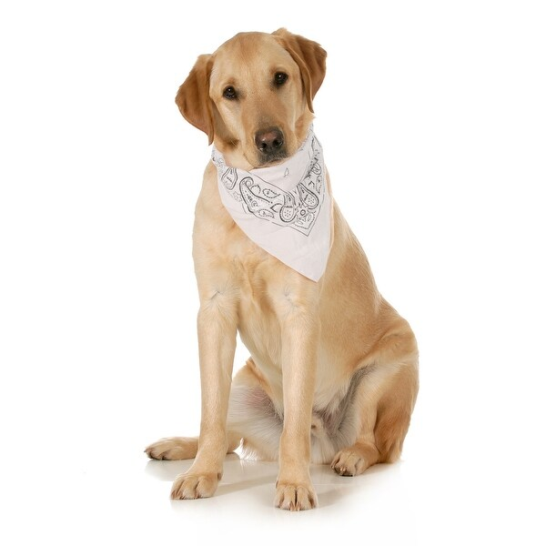 Balec 5-Pack Paisley Cotton Dog Scarf Triangle Bibs  - XL & Washable - One Size. Opens flyout.