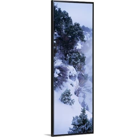 """""""Winter Snow Storm Grand Canyon Rim AZ"""" Black Float Frame Canvas Art"""