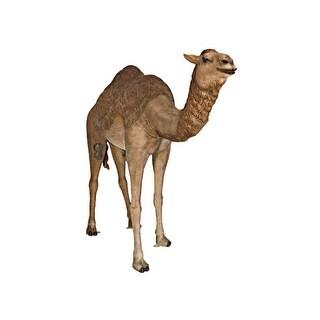 Design Toscano Grand-Scale Desert Camel Statue