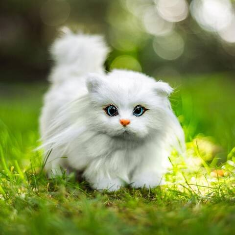 18 Inch Doll Pet Accessory, Truly Adorable Realistic White Furry Blue Eyed Kitty Cat Compatible Sized for American Girl Dolls