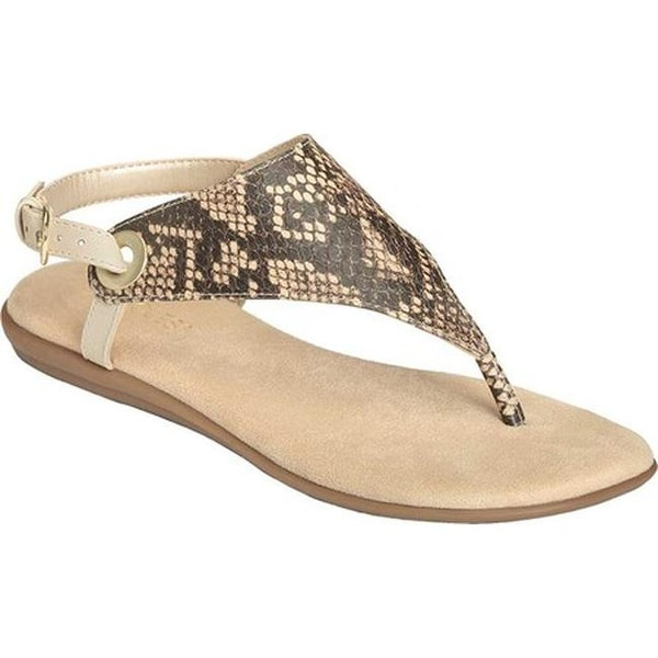 ed4c9b48aca3 Aerosoles Women  x27 s Conchlusion Sandal Brown Exotic Snake Embossed Faux  Leather