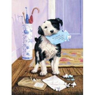 """The Mail Menace - Junior Small Paint By Number Kit 8.75""""X11.75"""""""