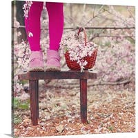Premium Thick-Wrap Canvas entitled Spring - Multi-color