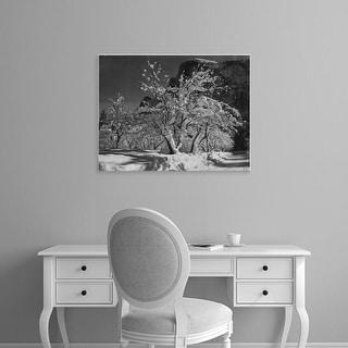 Easy Art Prints Ansel Adams's 'Half Dome, Apple Orchard' Premium Canvas Art