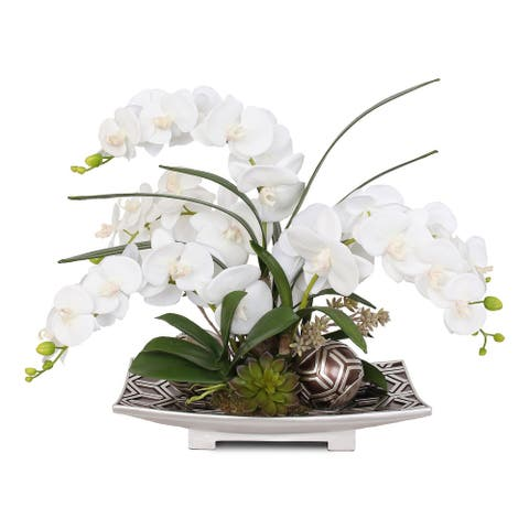 Real touch White Phalaenopsis Orchids, Succulents, Decor Ball in Plate - 25W x 16D x 20H