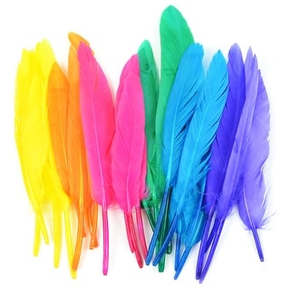 Duck Quill Feathers 24/Pkg-Bright Mix - bright mix
