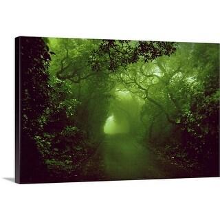 """""""Rainforest"""" Canvas Wall Art"""