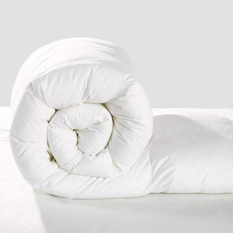 All Season Organic Cotton Covered Silk Comforter
