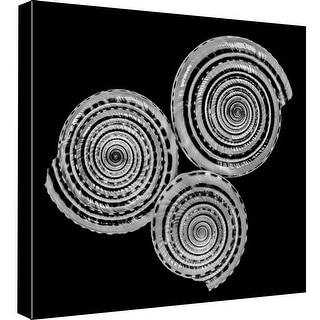 """PTM Images 9-98753  PTM Canvas Collection 12"""" x 12"""" - """"B & W Seashell"""" Giclee Shells Art Print on Canvas"""