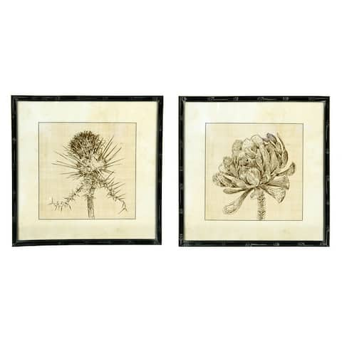Botanical Sketches Wall Decor in Fir Wood Frames (Set of 2 Styles) - Beige