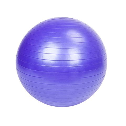 65cm 1050g Gym/Household Yoga Ball Smooth Surface Silver