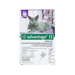 Advantage Flea Control for Cats and Kittens Over 9 lbs 4 Month Supply|https://ak1.ostkcdn.com/images/products/is/images/direct/c97c9dc48c09f12da1a76fa47216ebcf41db3ad8/Flea-Control-for-Cats-and-Kittens-Over-9-lbs-4-Month-Supply.jpg?impolicy=medium