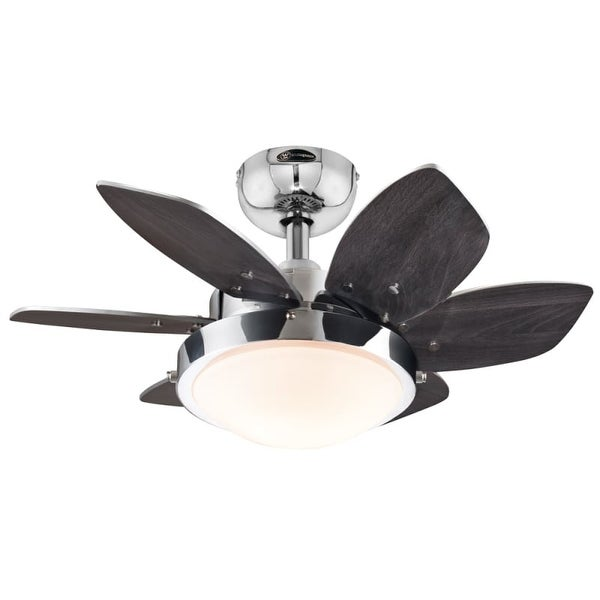 """Westinghouse 7863100 Quince 24"""" 6 Blade Hanging Indoor Ceiling Fan with Reversible Motor, Blades, Light Kit, and Down Rod"""