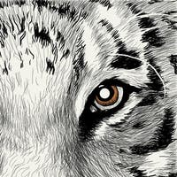 """Club Pack of 288 Gray and White Tiger Eye 3-Ply Disposable Beverage Napkins 5"""""""