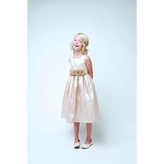 Sweet Kids Champagne Taffeta Easter Spring Flower Girl Dress 7-12
