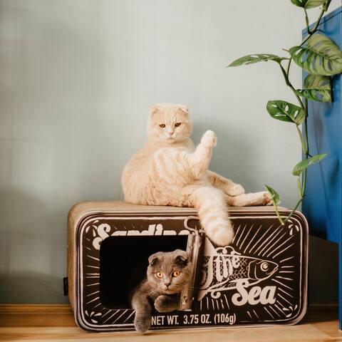 District 70 Sardine Cardboard Cat Scratcher