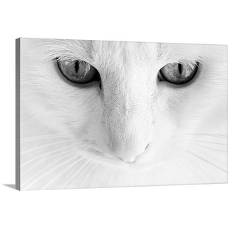"""""""Close up of a cats face."""" Canvas Wall Art"""