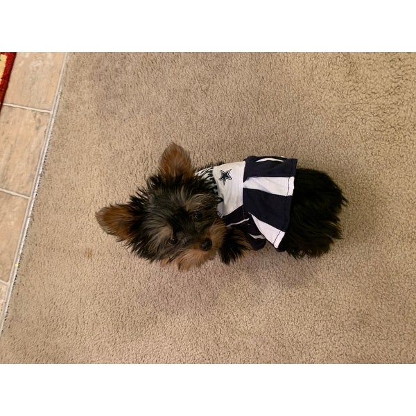 caf385ee364dc Shop NFL Dallas Cowboys Cheerleader Dress For Dogs And Cats - On Sale -  Free Shipping On Orders Over  45 - Overstock - 19991359