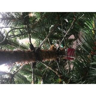 Pre-Lit Carolina Pine