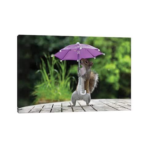 """iCanvas """"Umbrella I"""" by Max Ellis Canvas Print"""