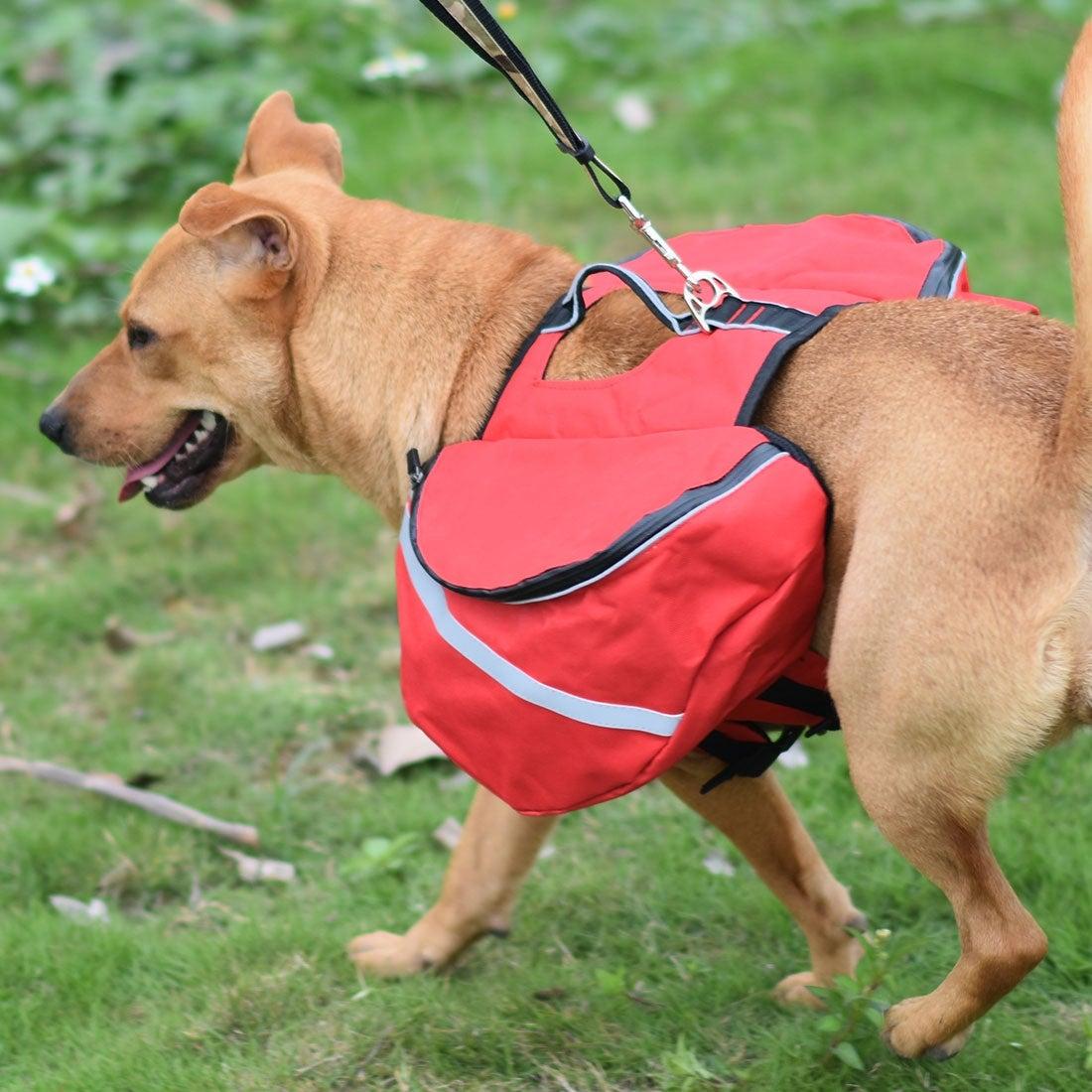 Dog Backpack Bag Pet Carrier Holder Bag for Outdoor Travel Hiking Camping (Gray - L)