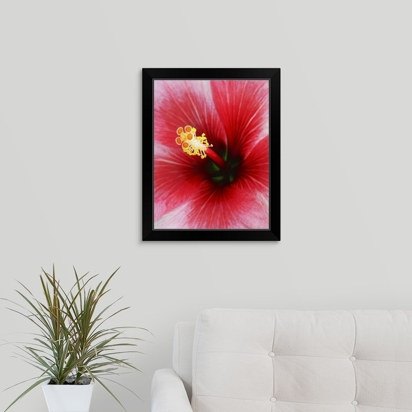 """""""The stamen of a red hibiscus flower"""" Black Framed Print"""