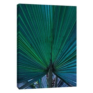 "PTM Images 9-108365  PTM Canvas Collection 10"" x 8"" - ""Hawaii Palm"" Giclee Leaves Art Print on Canvas"