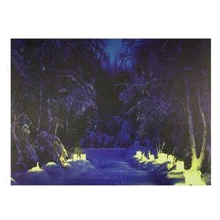 "LED Lighted Nighttime in the Woods Winter Scene Canvas Wall Art 11.75"" x 15.75"" - N/A"