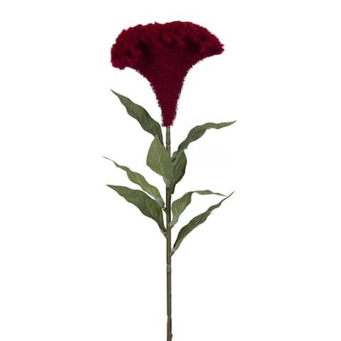 "Set of 12 Maroon Red Celosia Floral Stem 27"""