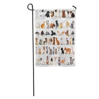 Overstock Gray Group Of Cute Pets White Domestic Cat Dog Puppy Kitten Garden Flag Decorative Flag House Banner 12x18 Inch All Seasons From Overstock Com Daily Mail