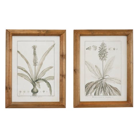 Large Black and White Vintage Botanical Prints in Natural Wood Frames Set of 2