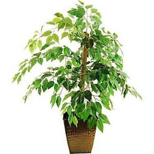 Designs by Lauren 16TFP46 38 in. Mini Ficus Tree in an Embossed Metal Container with Faux Dirt
