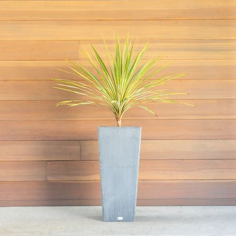 Pure Series Midland Planter