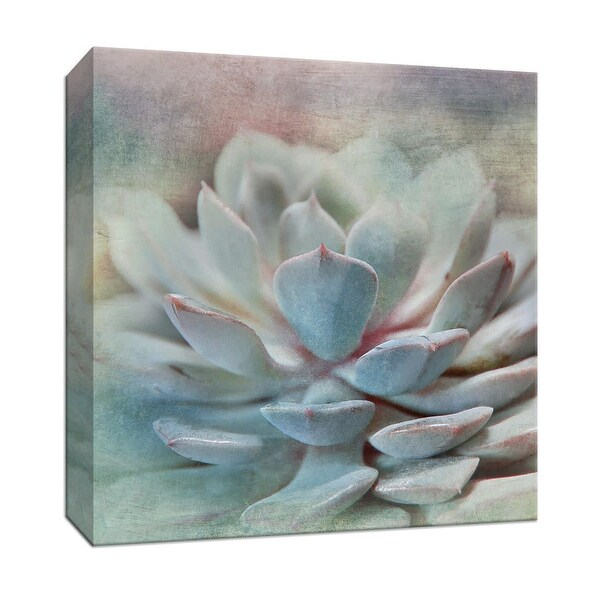 """PTM Images 9-147931 PTM Canvas Collection 12"""" x 12"""" - """"Pastel Succulent I"""" Giclee Flowers Art Print on Canvas"""
