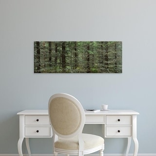 Easy Art Prints Panoramic Images's 'Trees in a forest, Spruce Forest, Joutseno, Finland' Premium Canvas Art