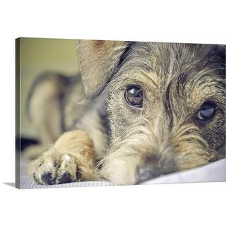 """Puppy dog."" Canvas Wall Art"