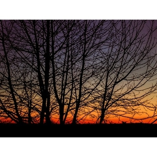Red Sunset With Trees Photograph Art Print