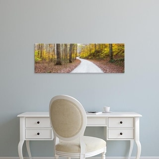 Easy Art Prints Panoramic Images's 'Road passing through a forest, Larue