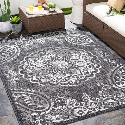 Kaisa Indoor/ Outdoor Paisley Medallion Area Rug