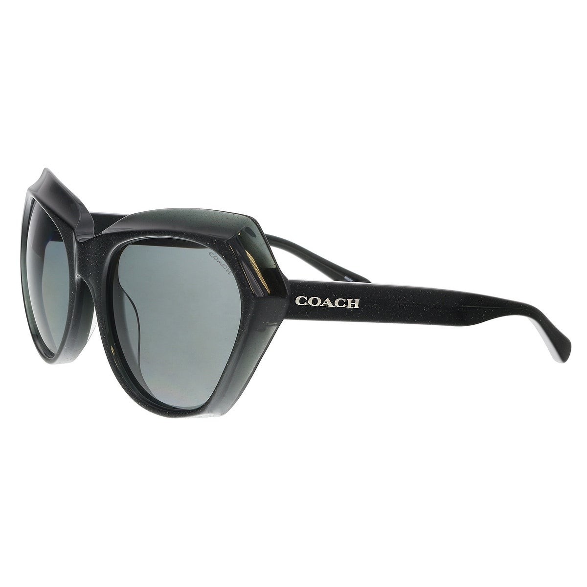 05d6b2593f1 Coach Sunglasses