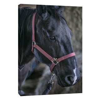 """PTM Images 9-108375  PTM Canvas Collection 10"""" x 8"""" - """"Horse Fort Ranch 1"""" Giclee Horses Art Print on Canvas"""