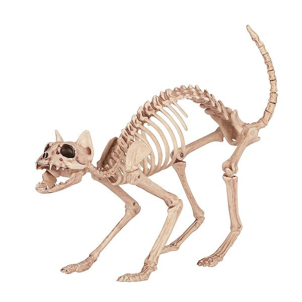 Skeleton Kitty Bonez Halloween Decoration