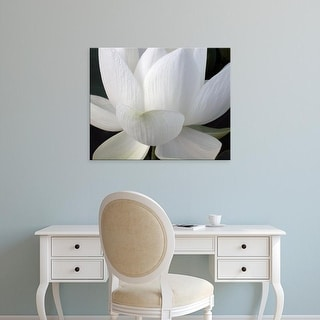 Easy Art Prints Jim Christensen's 'Delicate Lotus V' Premium Canvas Art