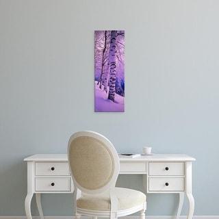 Easy Art Prints Panoramic Images's 'Birch trees at the frozen riverside, Vuoksi River, Imatra, Finland' Canvas Art