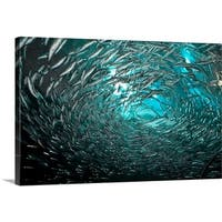 Premium Thick-Wrap Canvas entitled A shoal of fishes in San Francisco, California