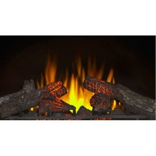 Napoleon NEFI24H 5000 BTU 1500 Watt 24 Inch Wide Built-In Vent Free Electric Fireplace Insert with Electronic Ignition and