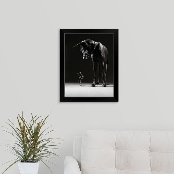 """""""A Chihuahua standing on its hind legs facing the Great Dane"""" Black Framed Print"""