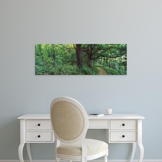 Easy Art Prints Panoramic Images's 'Pathway in a forest, Mississippi River, Wisconsin, USA' Premium Canvas Art