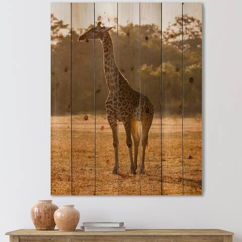 Designart 'African Giraffe In The Wild II' Farmhouse Print on Natural Pine Wood