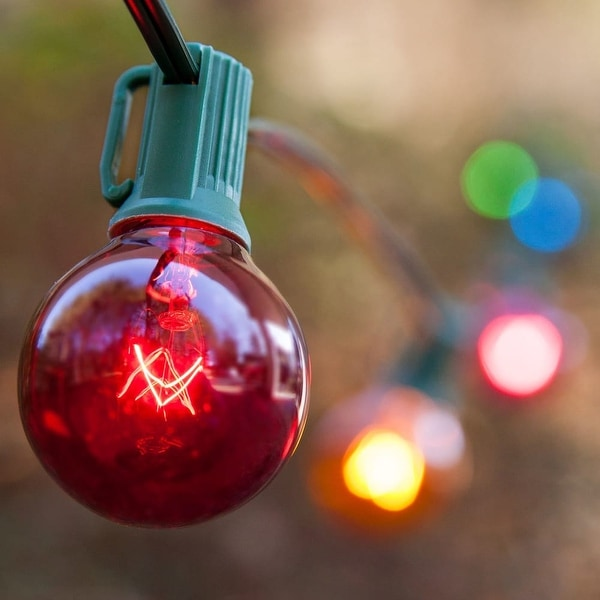 Wintergreen Lighting 70896 25 Bulb 25 Foot Long Incandescent Decorative Holiday String Lights with Green Wire